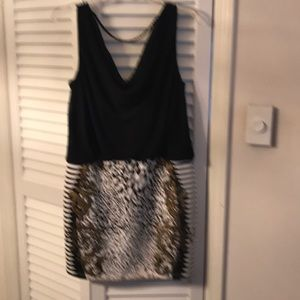 Dress with animal print and Gold design.